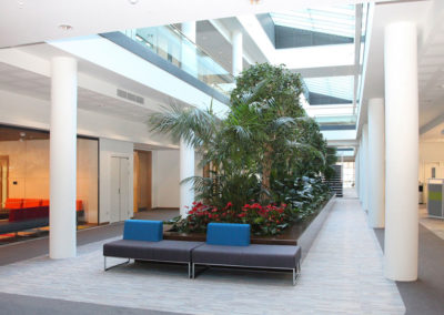 OFFICES 6 LIMERICK
